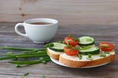 Sandwichs avec le fromage fondu, les tomates-cerises, les concombres et les oignons verts images libres de droits