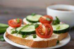 Sandwichs avec le fromage fondu, les tomates-cerises, les concombres et les oignons verts image libre de droits