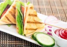 Sandwichs sains à panini de veggie, fraîchement grillés image libre de droits