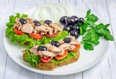 Sandwichs sains avec des thons image libre de droits