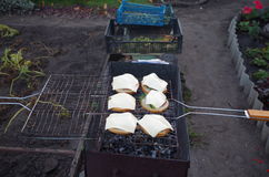 Sandwichs sur le gril Photo libre de droits