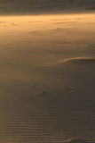 Sandwind Arkivfoton