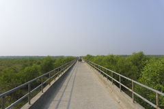 Sandwip bro Arkivbilder