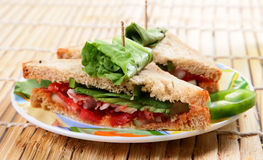sandwitch蔬菜 图库摄影