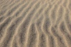 Sandy развевает - вертикальное строение текстуры песка и созданный ветром и океаном Стоковое фото RF