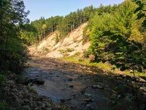 Sandy-Abhang, der einen Strom in Ashland County, WI übersieht Stockfoto