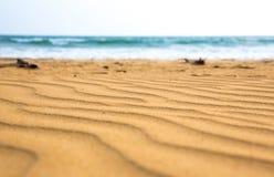 Sandy acena na costa de Sri Lanka, foco seletivo imagens de stock royalty free