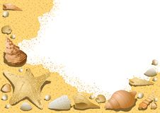 Sandy Background avec des coquillages Images libres de droits