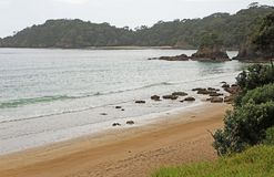 Sandy Bay Royalty-vrije Stock Foto's