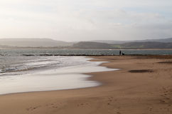 Sandy Bay Beach - Devon Royaltyfri Fotografi