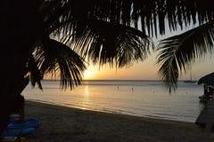 Sandy Bay, Roatan, Honduras, palme, bacino, kajak Immagini Stock