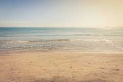 Sandy Beach Immagini Stock Libere da Diritti