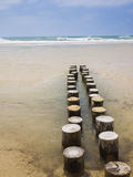 Sandy beach. With short wooden breakwater posts or groynes royalty free stock images