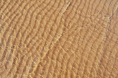 Sandy Beach. Transparent wave of the sea on the sandy beach royalty free stock images