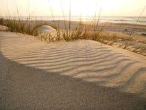 Sandy beach. Stock Images