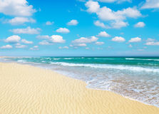 Sandy beach Stock Images