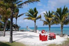 Sandy Beach Royaltyfri Bild