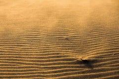 Sandy Beach fotografía de archivo