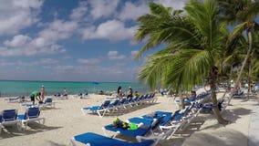 Sandy Beach video estoque