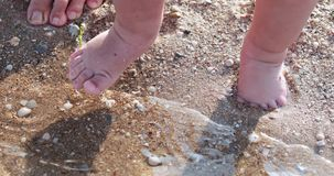 Feet of a child on the beach. On a sandy beach, baby`s feet try water stock footage