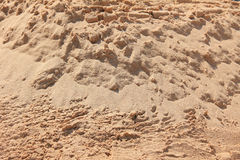 Sandy beach background. Desert sand Stock Images