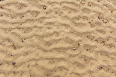 Sandy beach background Royalty Free Stock Photo