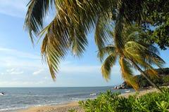 Sandy beach in Batu Ferringhi, Penang Island, Malaysia Royalty Free Stock Photos