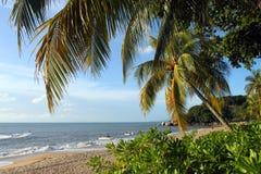Sandy beach in Batu Ferringhi, Penang Island, Malaysia Stock Photos