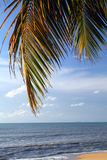 Sandy beach in Batu Ferringhi, Penang Island, Malaysia Royalty Free Stock Image