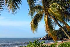 Sandy beach in Batu Ferringhi, Penang Island, Malaysia Royalty Free Stock Photography