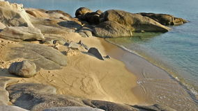 Sandy beach. Beautiful lonely sandy beach with small waves stock video