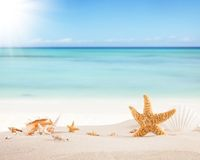 Sandy beach with blank paper for text Stock Photography