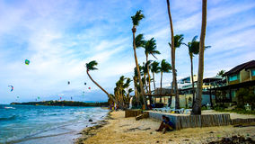 Sandy beach, blue sea, waves and palm trees bendable by flows strong sea wind. Royalty Free Stock Images