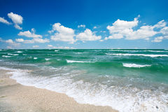 Sandy beach and blue sky. In the summer stock photography