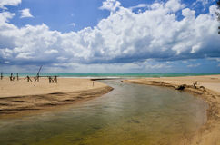 Sandy beach with blue sky and clouds Royalty Free Stock Photography