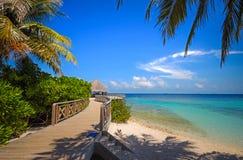 Sandy Beach branco na ilha maldiva Fotografia de Stock