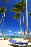 Sandy beach on Caribbean resort Stock Photos