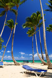 Sandy beach on Caribbean resort Stock Photography