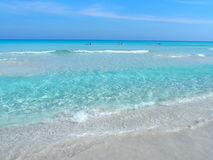 Sandy beach at Caribbean Sea in Varadero city in Cuba. With clear water on seaside landscape and exotic palms and trees, clear blue sky in 2017 warm sunny Royalty Free Stock Photography
