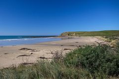 Sandy beach on Catlins Coast, New Zealand`s South Island. Broad stretch of pristine golden sandy beach along the Catlins Coast of New Zealand`s South Island Stock Photography