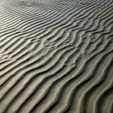 Sandy beach. Close up of the sandy beach at low tide stock image