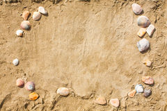 Sandy beach closeup, Seacoast sand background. Space for text. Stock Image
