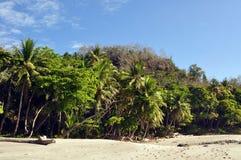 A Sandy Beach and Coastline of Trees stock photo