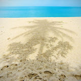 Sandy beach and coconut tree shadow Royalty Free Stock Images