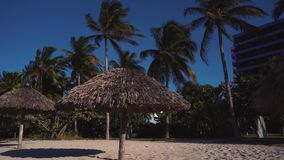 Sandy beach in Cuba stock video