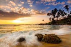 Sandy beach at dawn. Sri Lanka Stock Images