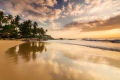 Sandy beach at dawn. Sri Lanka Royalty Free Stock Photo