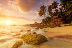 Sandy beach at dawn. Sri Lanka Royalty Free Stock Image