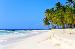 Sandy beach in the Dominican Republic. Royalty Free Stock Photography