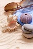 Sandy Beach dos óculos de sol Foto de Stock